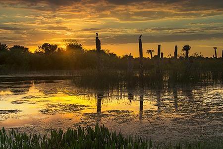 Golden Sunset at Viera by Dirk Den Boef 450 300