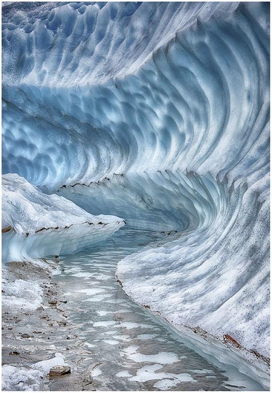 """Bronwyn Horvath, """"Glacier Trail"""""""