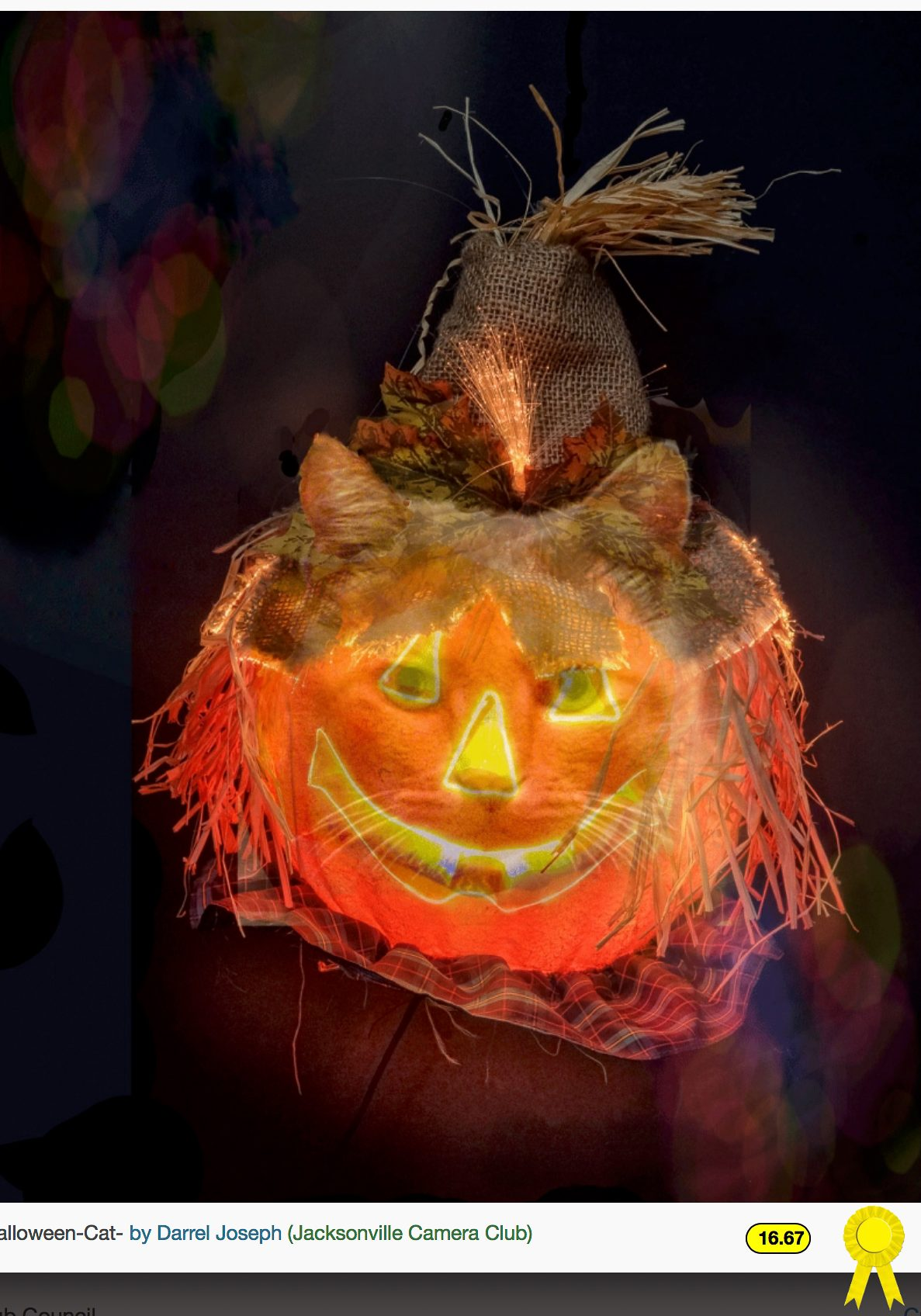 Halloween Cat - Darrel Joseph - Creative