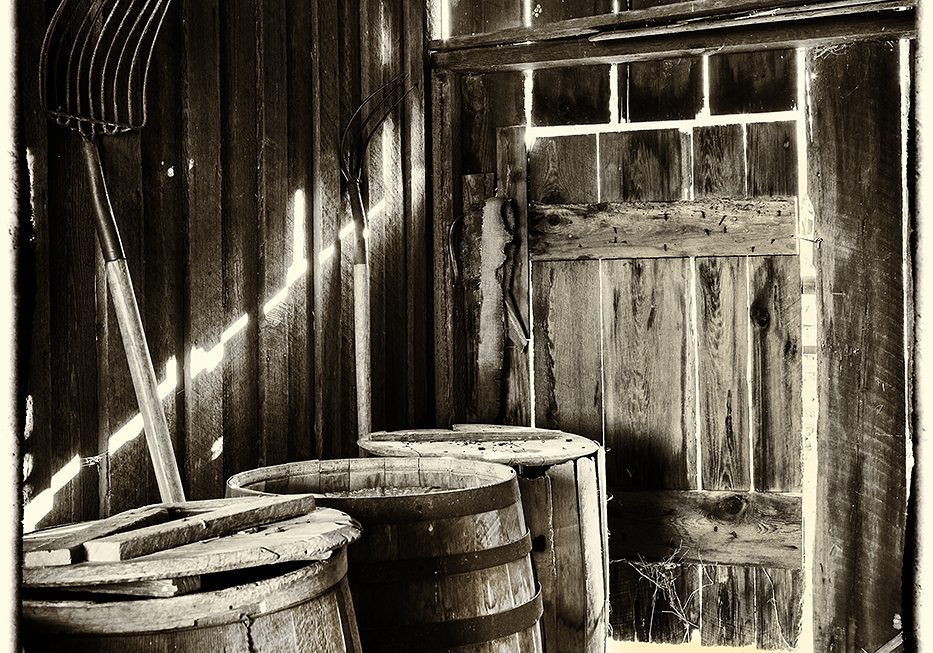 Storage Shed Sepia..JAN VALLELY